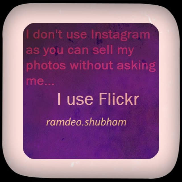 Flickr is better photo sharing than Instagram
