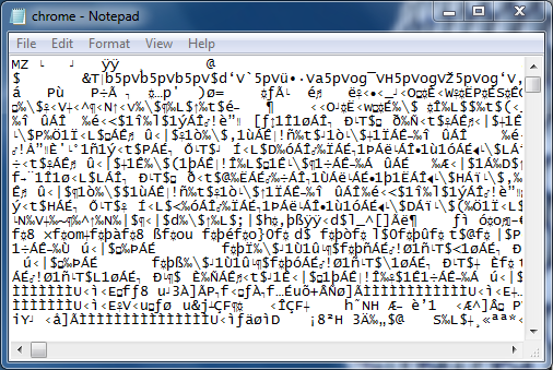 A .exe file in Computer's language
