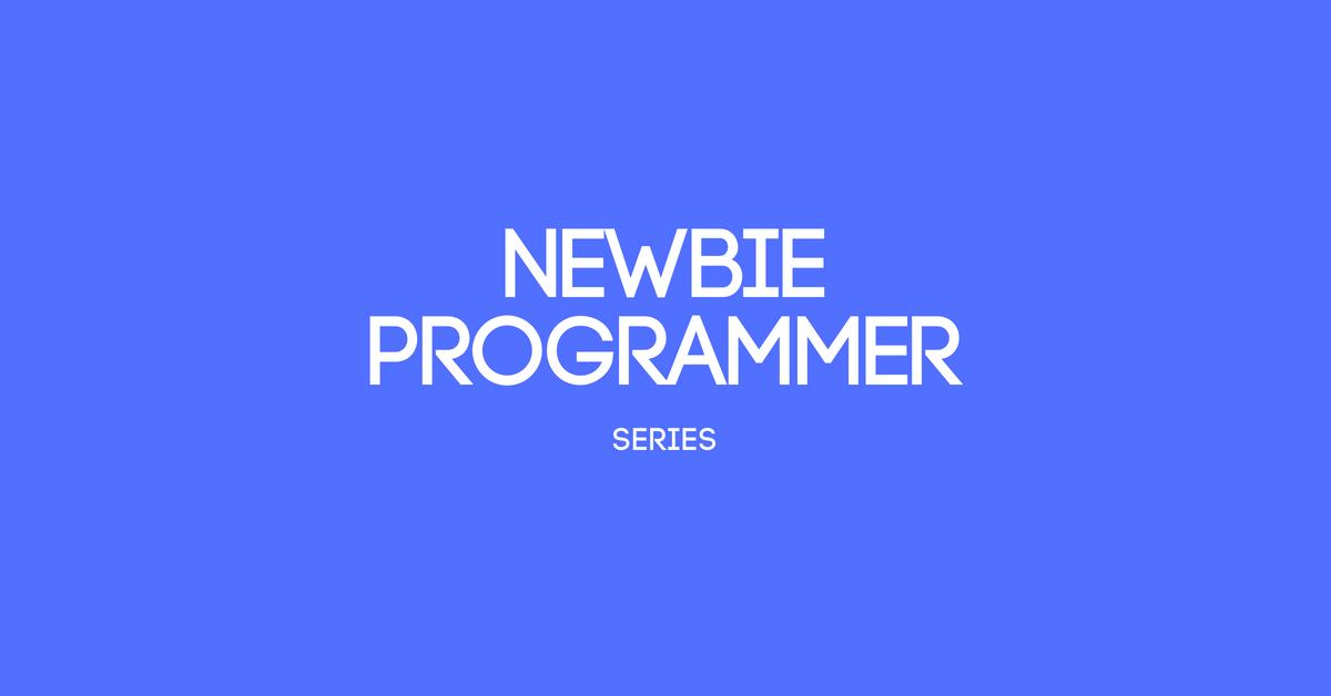 Newbie Programmer